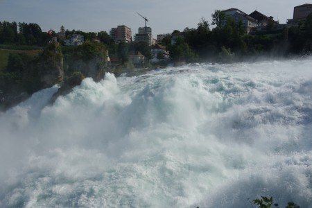 Rheinfalls Buchinger